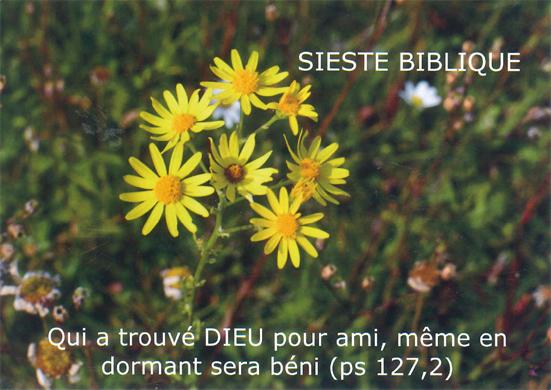 MU sieste bibl juin 2017