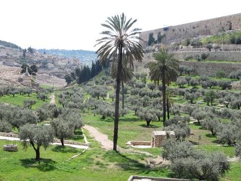 MU ETE 2017 Israël